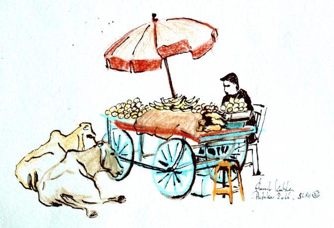 vendeur de fruit Pushkar
